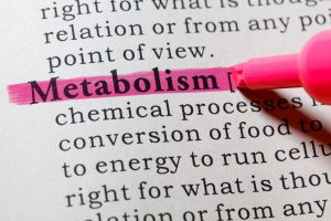 metabolism, health, weight